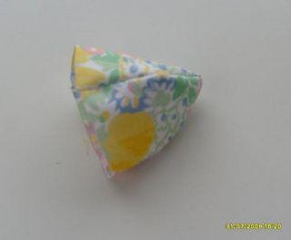 tulipa6