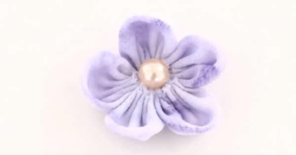 flor-de-fuxixo-pétalas-redondas