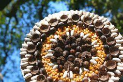 Mandala feita com sementes