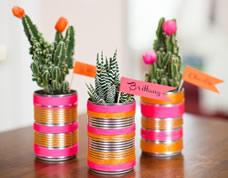 Latas decoradas para plantar cactos – Lindas!