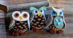 Corujinha feita com pinha e feltro para incrementar sua decoração