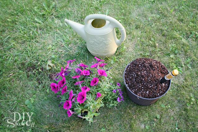 Plante as flores no vaso de pneu