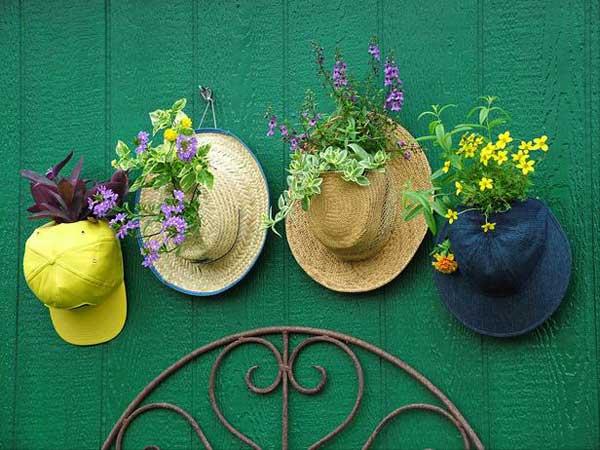 Jardineira chapéu