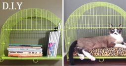 Gaiola para Mimos, Livros e Gatos. Nada de Pássaros!