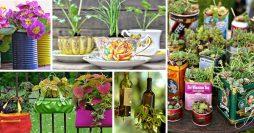 10 Ideias Incríveis Para Montar um Jardim Dentro de Casa