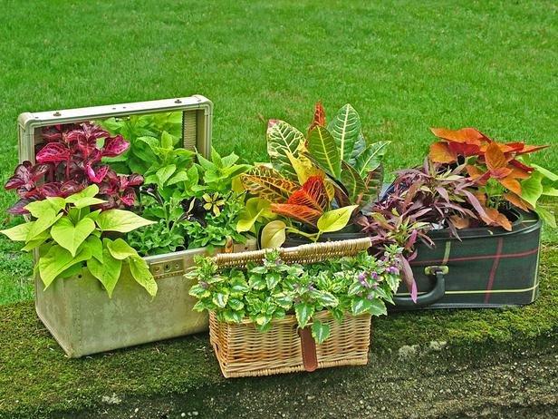 jardineira em cestas