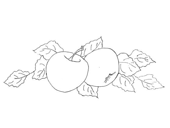 Riscos - Frutas maça