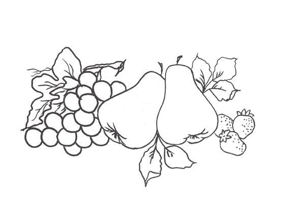 riscos de frutas para pintura em tecido - pera e uvas