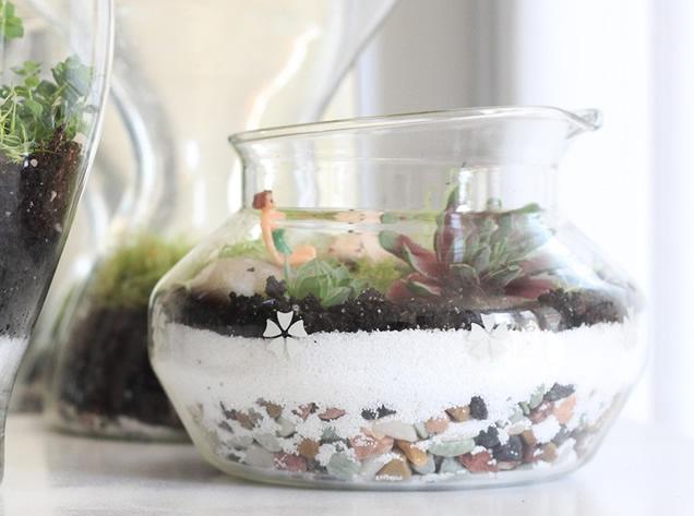 terrario-no-vidro