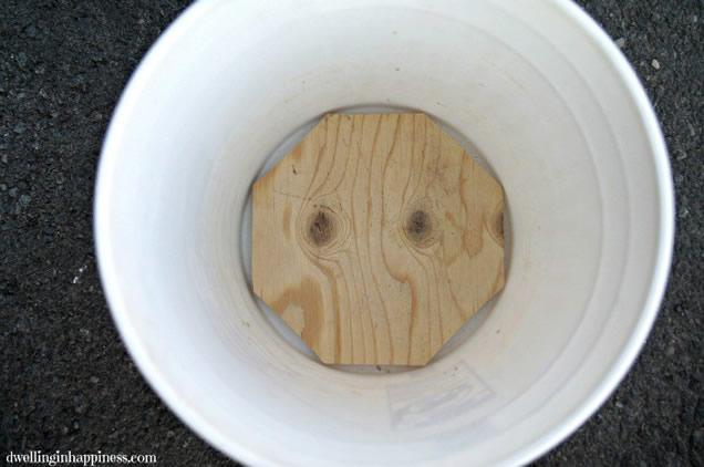 coloque-a-madeira-no-fundo-do-balde