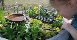 Aprenda a Fazer um Jardim no Vaso Encantador