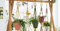 vasos de planta decorados