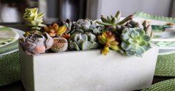 Como Fazer Vaso de Cimento: Passo a Passo + 34 Fotos
