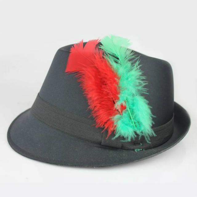 Chapéu com plumas