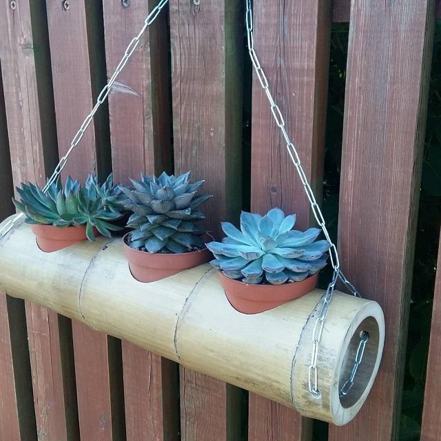 Vaso de plantas de bambu