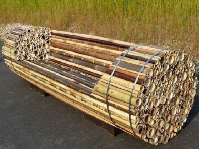 Banco de bambu