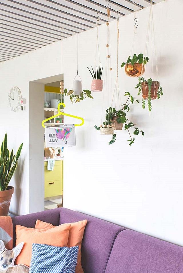 Sala com plantas no teto