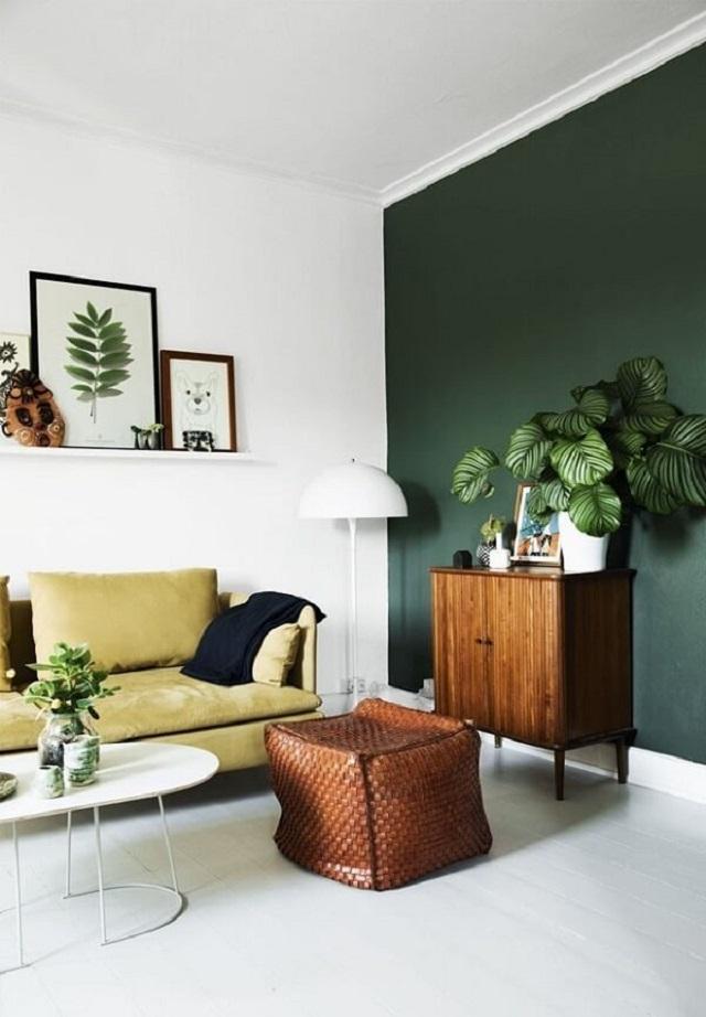 Plantas para sala pequenas