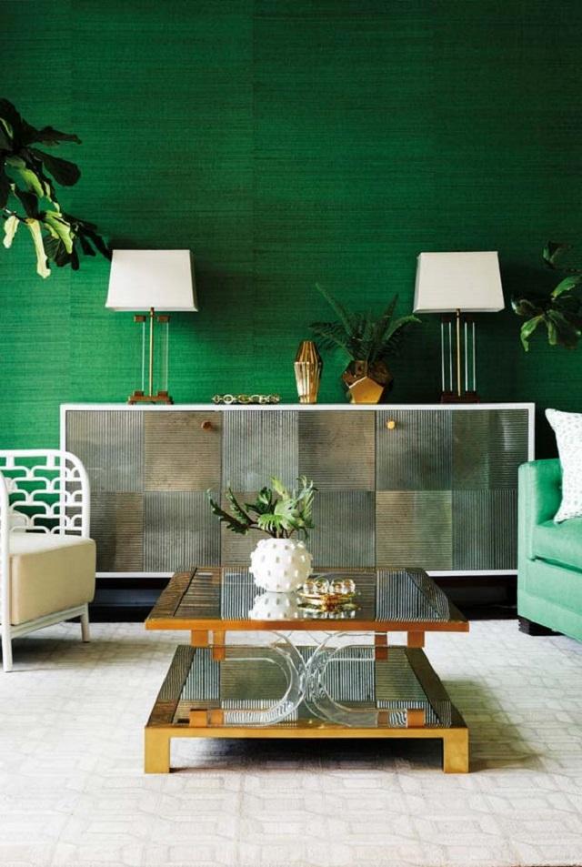 Sala com vasos de plantas