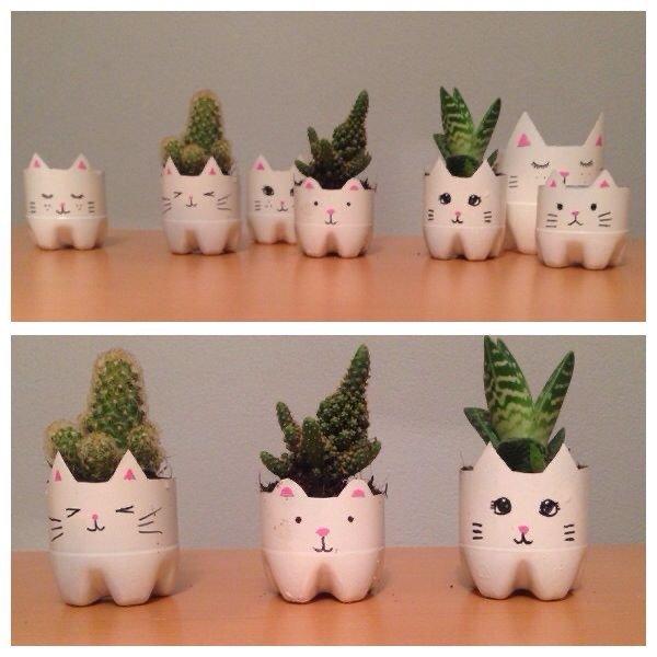 Vasos de plantas de garrafa pet