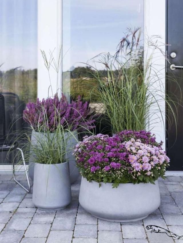 Jardim simples com vasos