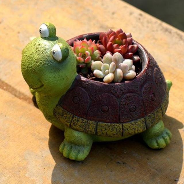 Vaso de tartaruga com suculentas