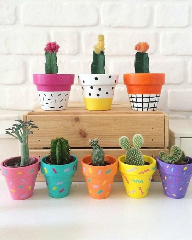 Vasinhos coloridos para cactos