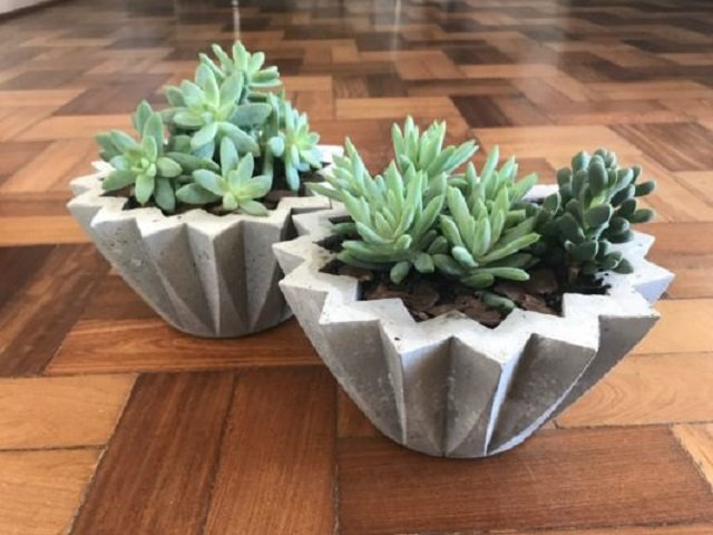 Vasos de concreto para suculentas