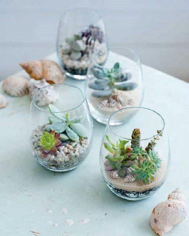 Terrários de vidro pequenos
