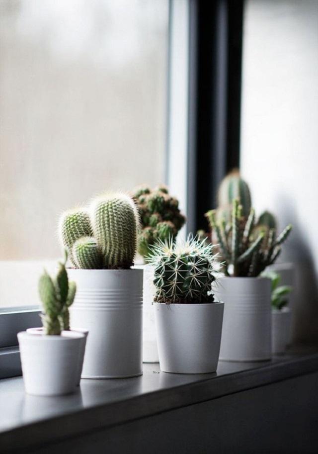 Vasos de alumínio