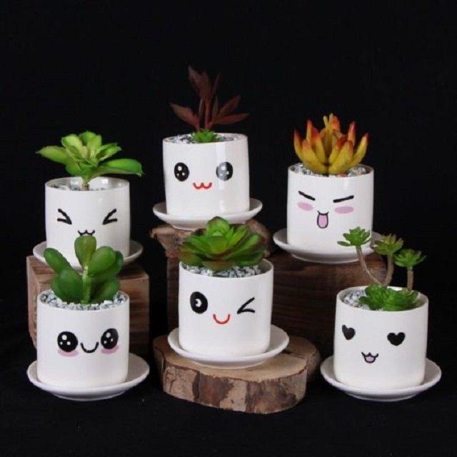 Vasinhos de plantas com carinhas