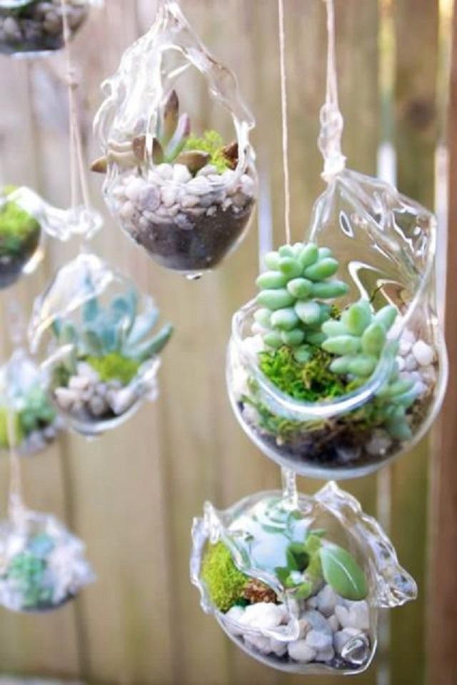Vasos de vidro para suculentas