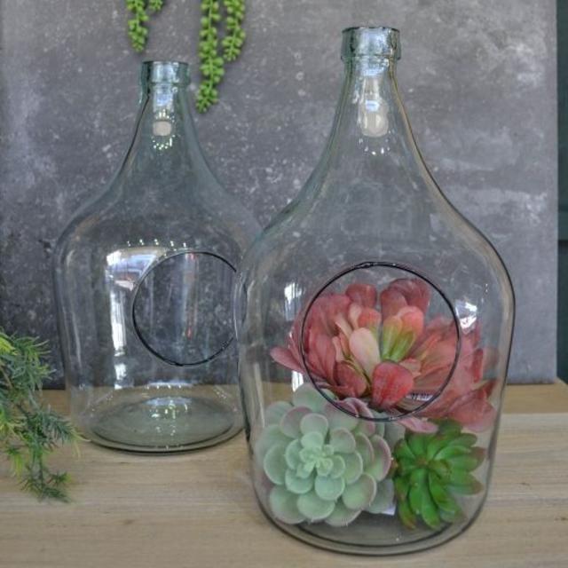Terrários de garrafa de vidro