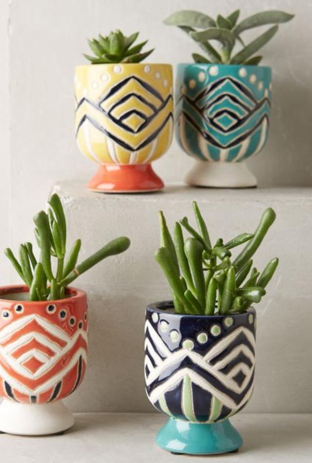 Mini jardim em vasos diferentes