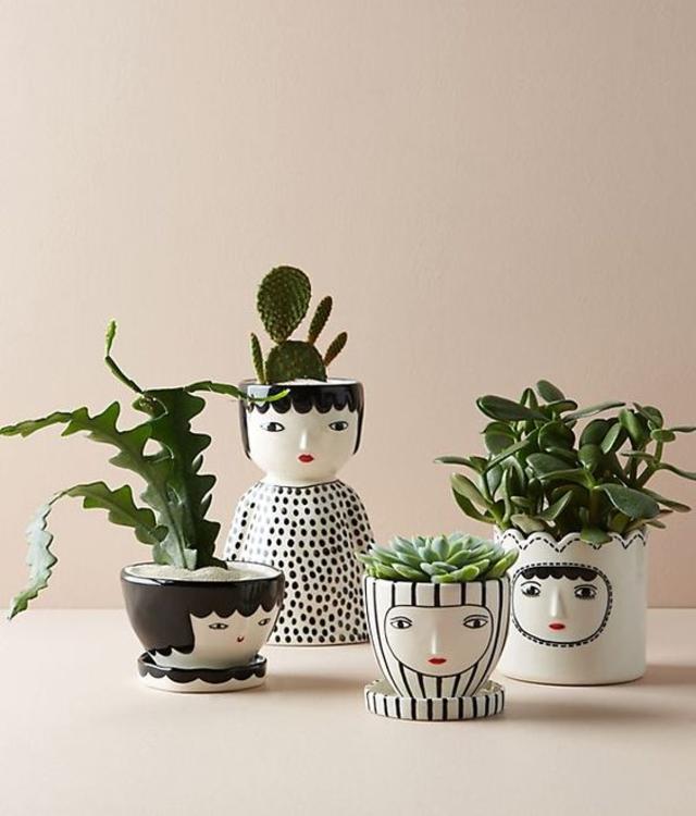 Mini jardim em vasos criativos