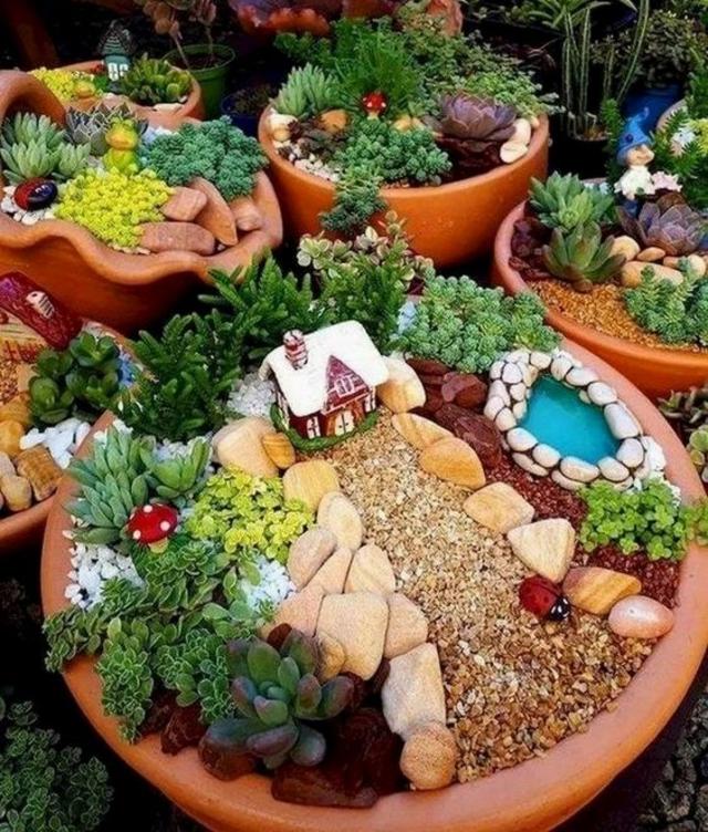 Mini jardim em vasos