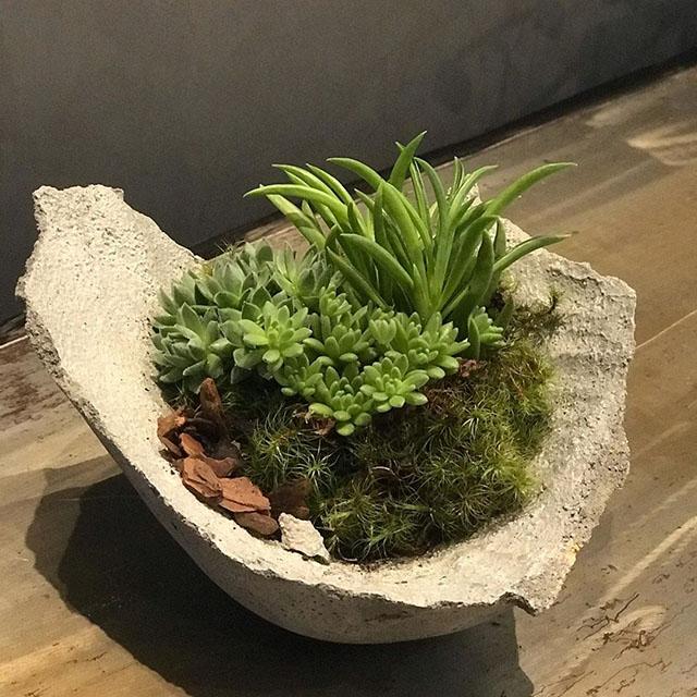 Vaso para plantas de concreto