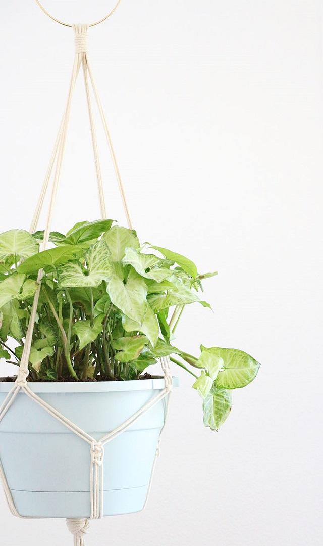 Suporte para plantas de macramê