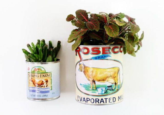 Latas com plantas para decorar banheiro
