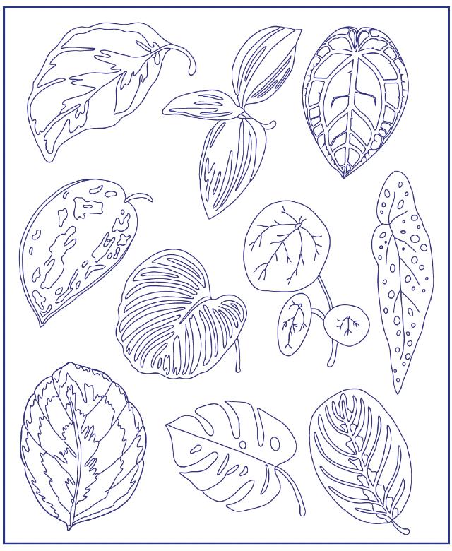 desenho para bordado folhas