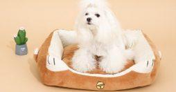 Como Fazer Casinha de Cachorro: 5 Passo a Passos Simples e Baratos