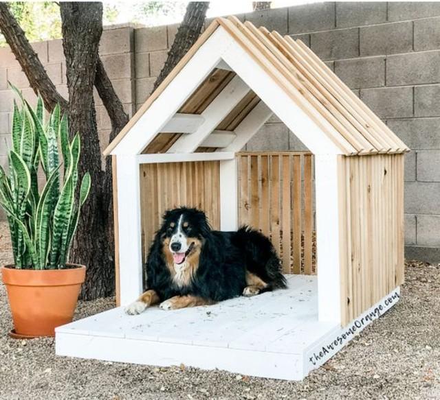 como fazer casinha de cachorro?
